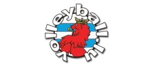 logo volleyballlu